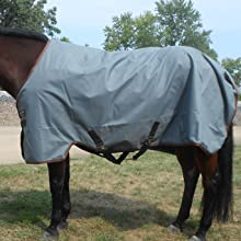 Affordable durable horse Sheet