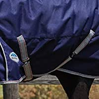 Image of belly straps securing blanket to horse