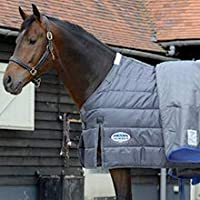 Image showing outer blanket pulled back to reveal liner underneath attached to horse