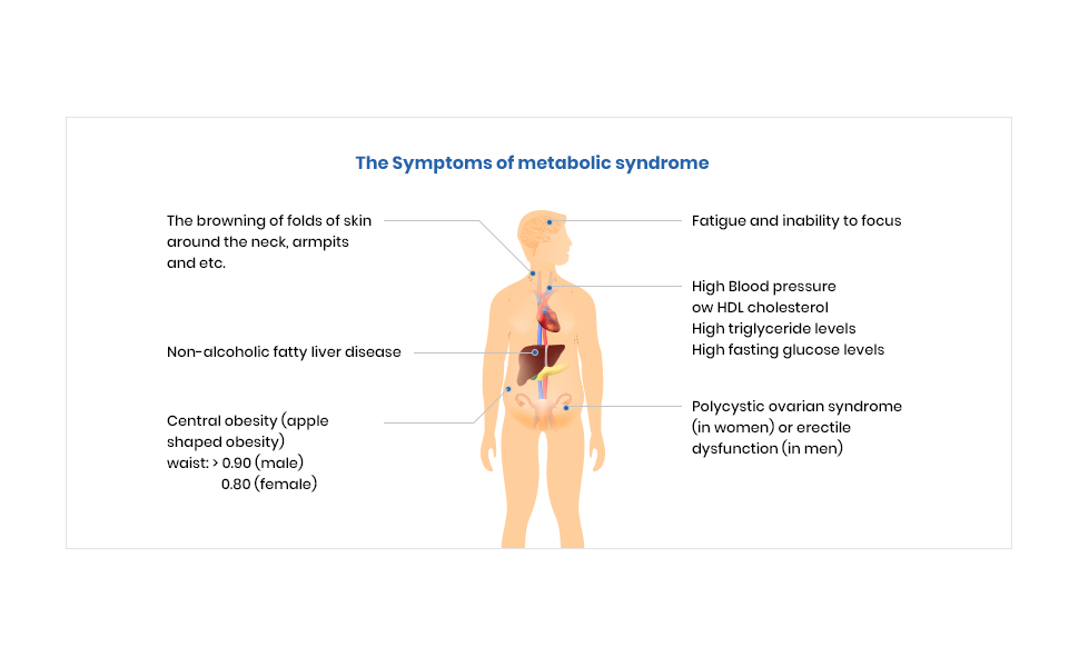 The Symptoms of metabolic syndrome