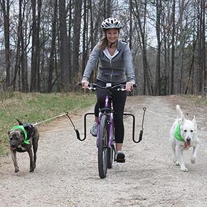multiple dogs bike