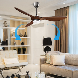 summer ceiling fan