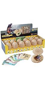 Dino Egg