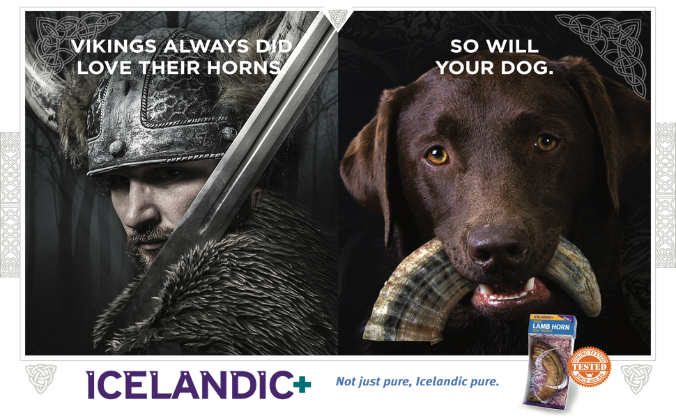 Amazon.com : Icelandic+ Lamb Horn Dog Treat - 100% All