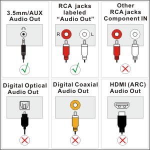 TV audio out ports