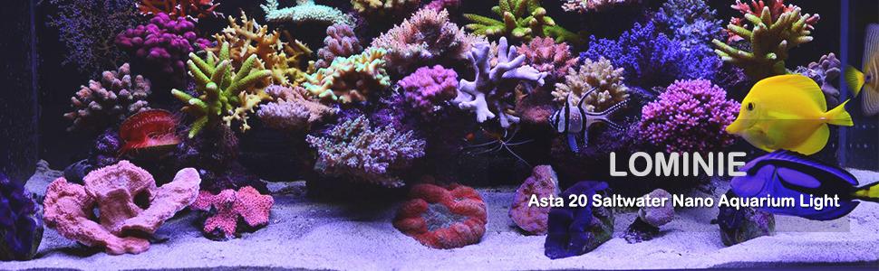 amazon com lominie led aquarium light nano asta 20 full spectrum