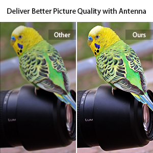 antenna indoor