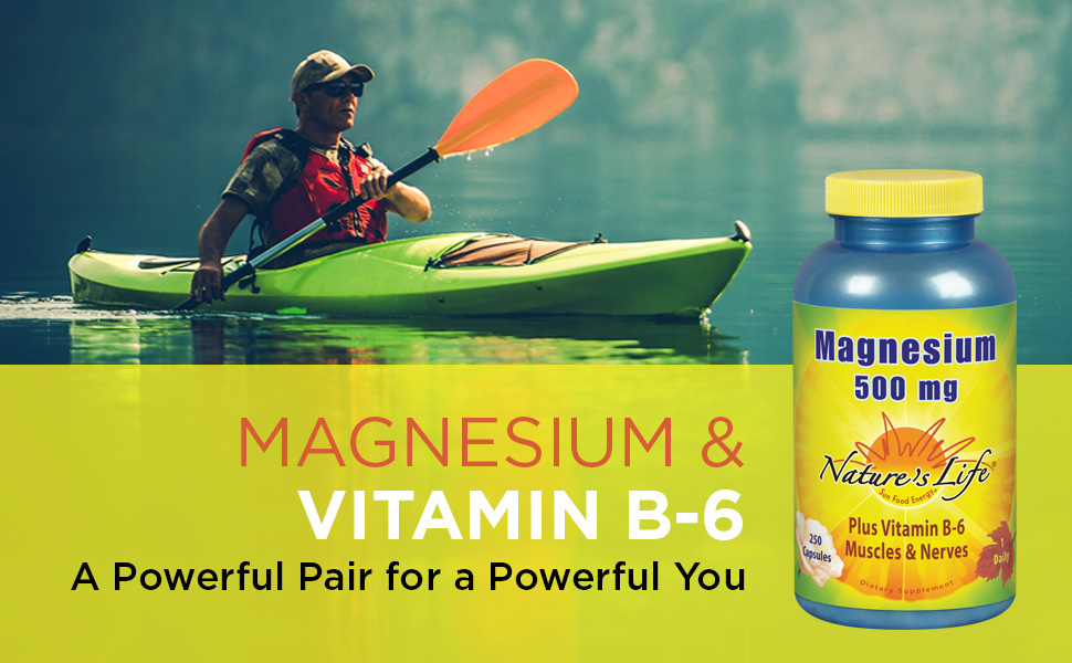 Nature's Life Magnesium Capsules 500mg High Potency Vitamin B-6 Muscles Nerves Support 250 Count