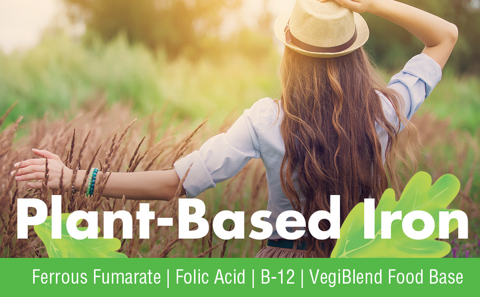 VegLife Vegan Iron 25 mg Plus Vitamin C Folic Acid B12 VegiBlend Food Base Iron Supplement 100 Tabs