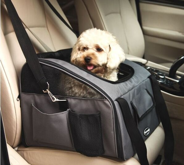 Dog Carrier Car Seat Belt