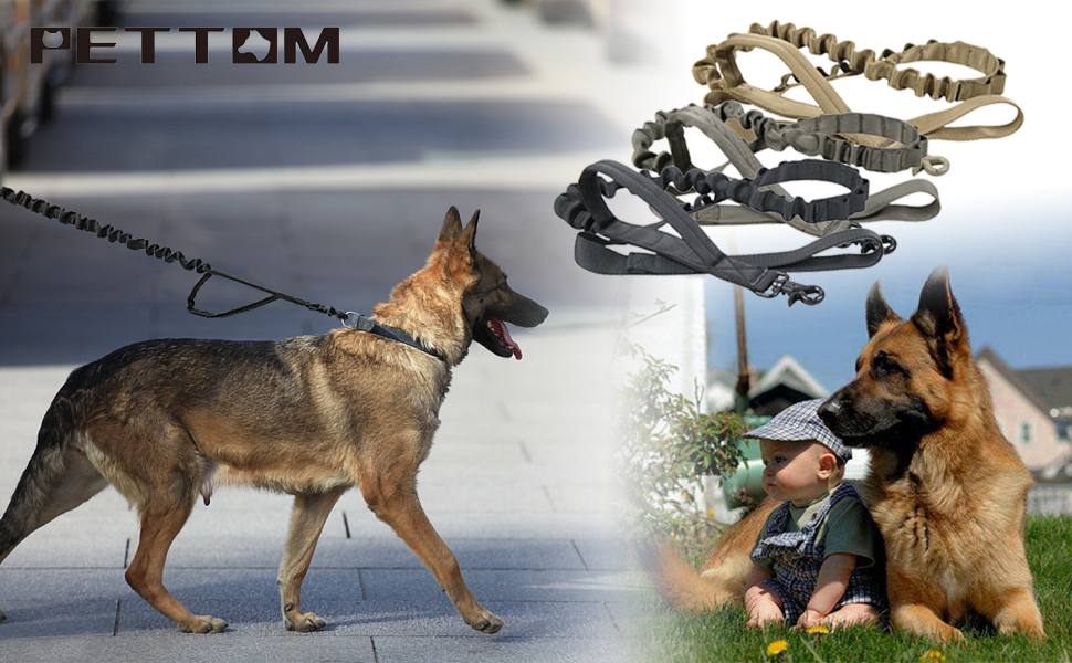 Amazoncom Pettom Heavy Duty Adjustable Nylon Tactical Military Us