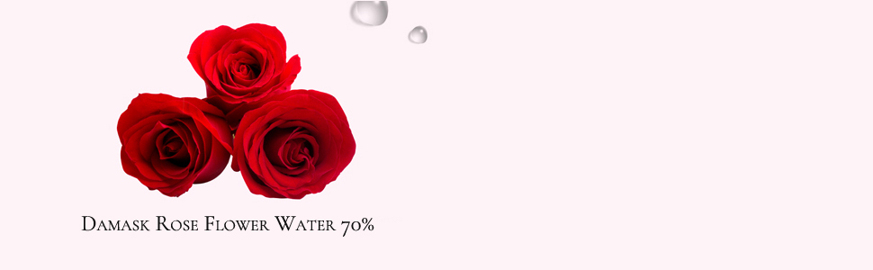 galactomyces,rose water,rose toner,face toner,facial toner,skincare,korean skincare,k beauty,toner