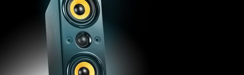 Two-way, 3-driver Speaker Design