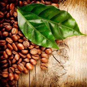 caffeine for hair growth and hair loss prevention thinning hair and receding hair line