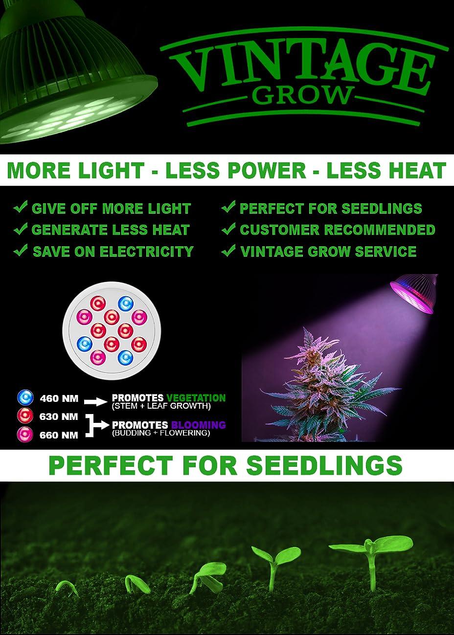 100 light bulb for indoor plants easy beginner grow cannabi