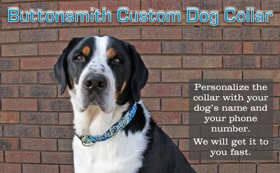 Add your dog's name and your phone number to the collar