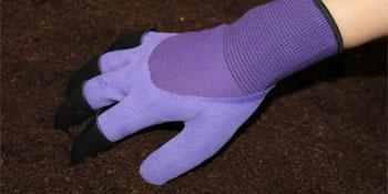 garden gloves purple