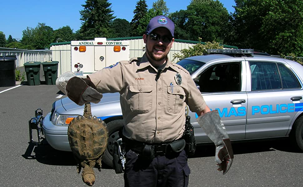 RAPICCA Animal Handling Gloves