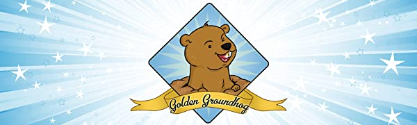 Golden Groundhog TCG Trading Card Cards Pokemon Lot Bundle