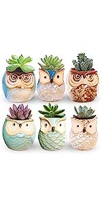 ROSE CREATE 6 Pcs 2.5 Inches Owl Pots
