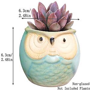 Green Non-Glazed Owl Pot