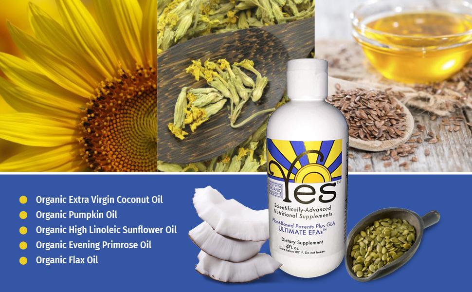 Yes EFA Essential Oils Fish Oil Replacement Parent Essential Oils