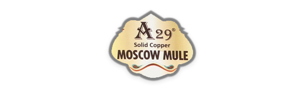 A29 logo