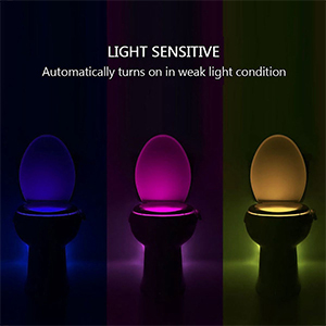 Awe Inspiring Best Light Motion Activated Toilet Night Light Toilet Nightlight Beutiful Home Inspiration Xortanetmahrainfo