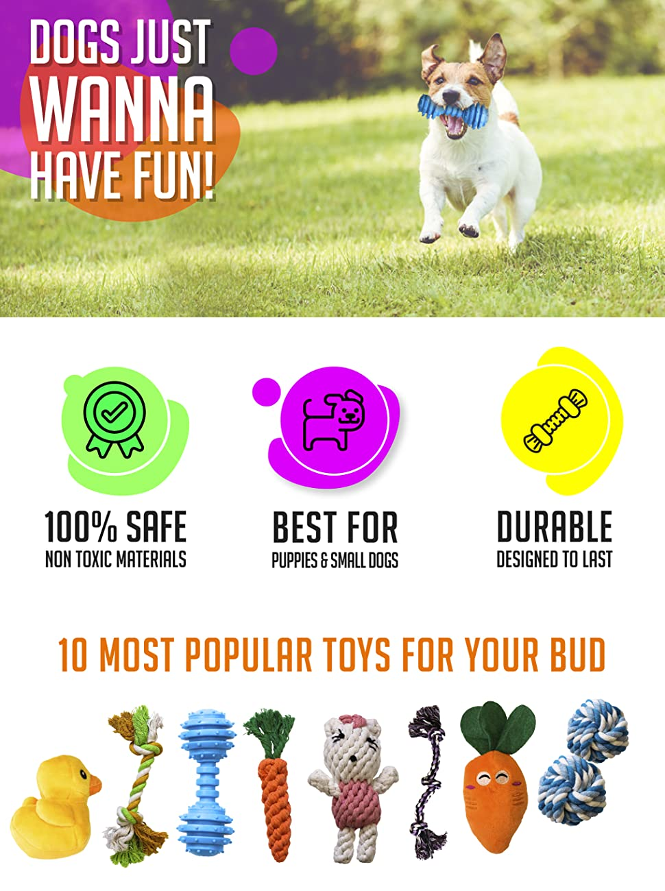 Pet Supplies : AMZpets 10 Most Popular Dog Toys for Small