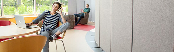 room dividers, wall dividers, office partitions, office dividers, room partitions