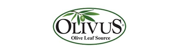 olivus logo