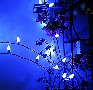 Outdoor LED String Lights,Diamond Strawberry 17 feet 50 LEDs Mood Lighting Blue Christmas Light Strands C3 Bulbs for Patio Garden Holiday Indoor Home Decorating MAXINDA UL Listed