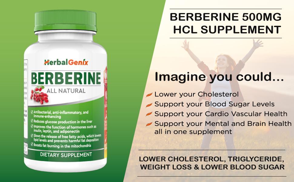 HerbalGenix Berberine 500mg HCL Supplement