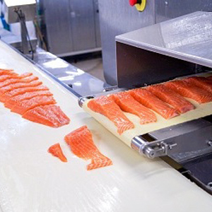 fresh salmon storage