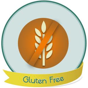 Diet Direct WonderSlim Pea Protein Snack Chips is Gluten Free