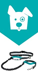 hands free running dog bungee leash