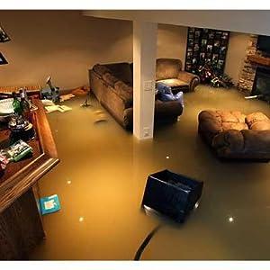 Flooded Basement  PumpSpy PSO1000 Wi-Fi Sump Pump Smart Outlet ab29d435 8173 4167 9c55 b297aa92415f