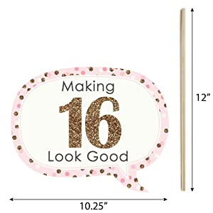 Amazon funny sweet 16 16th birthday party photo booth props funny sweet 16 photo booth prop kits are printed on sturdy card stock paper and include dowels and adhesives for quick assembly bookmarktalkfo Choice Image