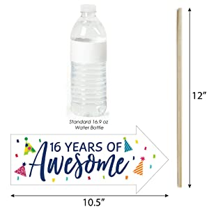 Amazon.com: Big Dot of Happiness Funny 16th Birthday - Cheerful ...