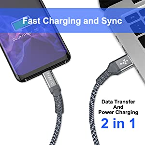 Amazon.com: iAlegant Cable USB tipo C. Paquete de 2 cables ...