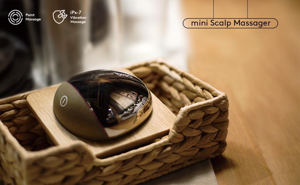 mini Scalp massage