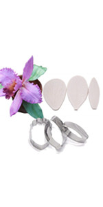 Orchid vein molds and cutters