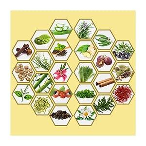 Amazon.com: St. Botanica 4d Café Crema de adelgazamiento ...