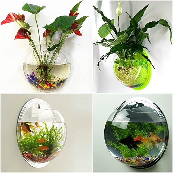 outgeek wall fish bubble wall hanging bowl. Black Bedroom Furniture Sets. Home Design Ideas