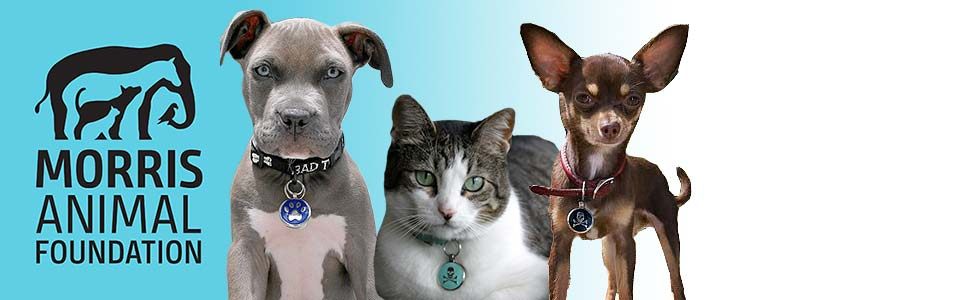 Morris Animal Foundation Logo and pets