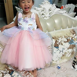 1766b057e The Best gift for a little princess-----Theme Birthday Party Cake Smash  Dress. Are You Looking for a Girl ...