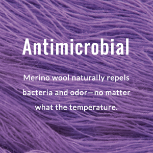 Antimicrobial detail call out