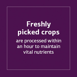 Freshly picked crops are processed within an hour to maintain vital nutrients