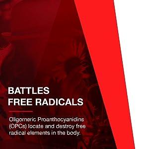 battle free radicals