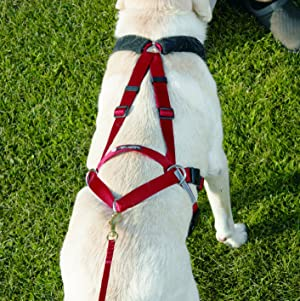 Amazon.com : Ultra Paws Adjustable Pulling Harness - Large/Dogs 30